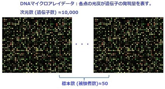 DNAマイクロアレイデータ
